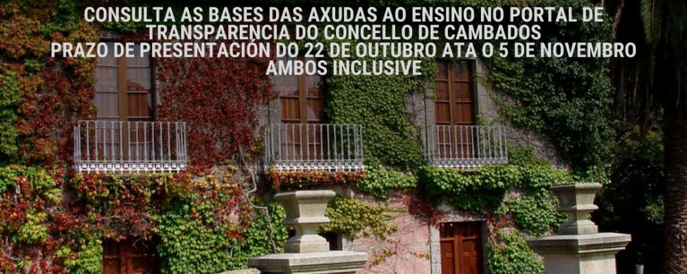 CAMBADOS HABILITA A BIBLIOTECA LUIS REI PARA A PRESENTACION DAS AXUDAS AO ENSINO E ASESORAMENTO AS ENTIDADES SEN FINS DE LUCRO