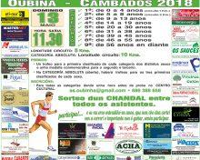 XXIX Maratón Popular de Oubiña (memorial Manuel Mariño Castro)