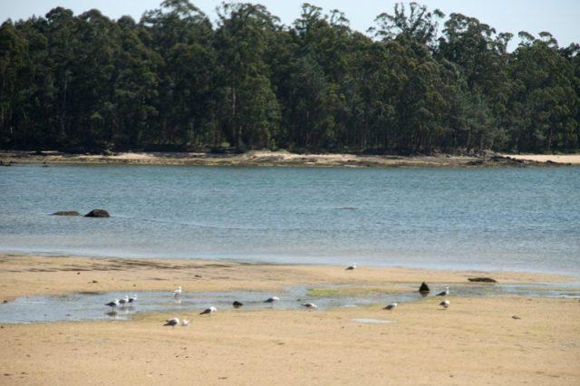 Praia As Saíñas