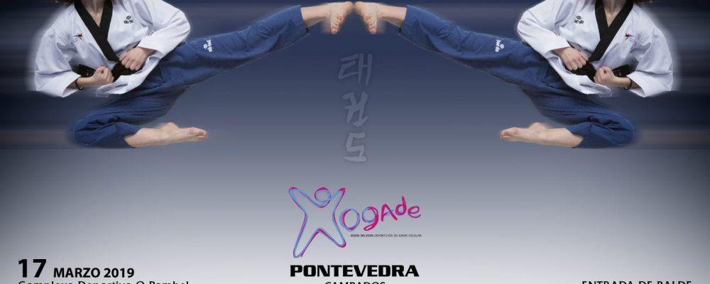 Campeonato provincial de taekwondo en edad escolar celebrado el 17 de marzo
