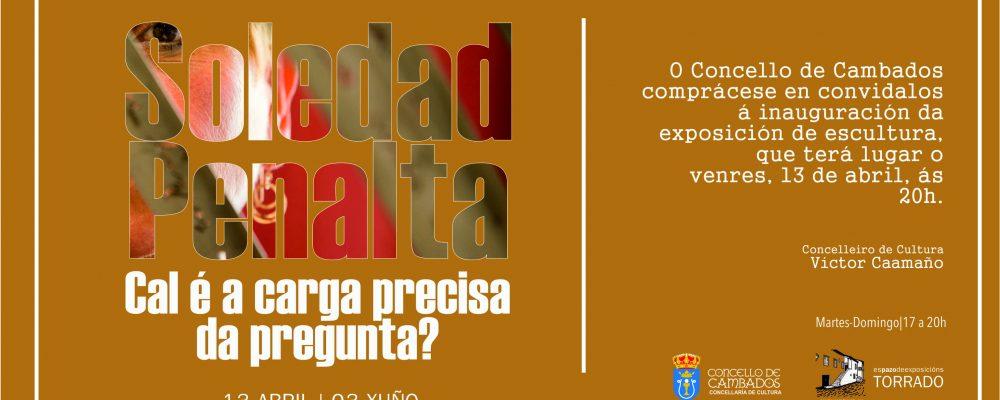 """Exposición de Soledad Penalta: """"cal é a carga precisa da pregunta?"""""""