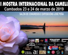 III Muestra Internacional de la Camelia en el Salón Peña