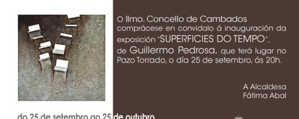 INAUGURACIÓN DA EXPOSICIÓN DE GUILLERMO PEDROSA