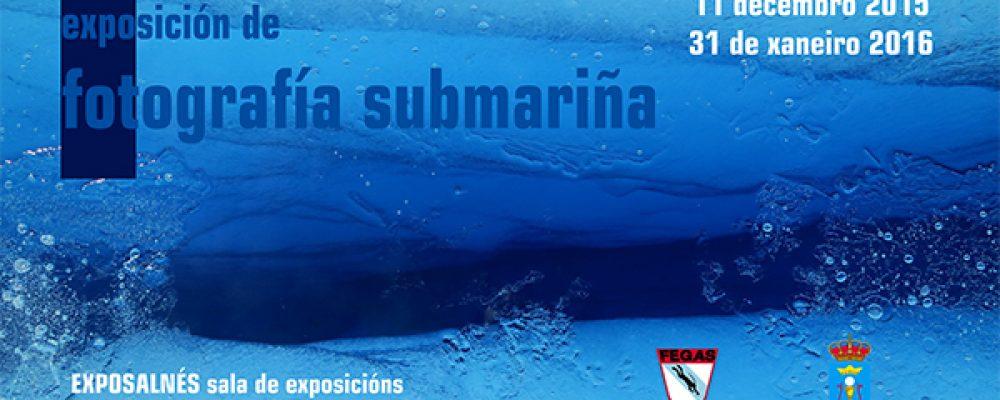 EXPOSICIÓN DE FOTOGRAFÍA SUBMARIÑA