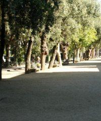 Paseo de A Calzada